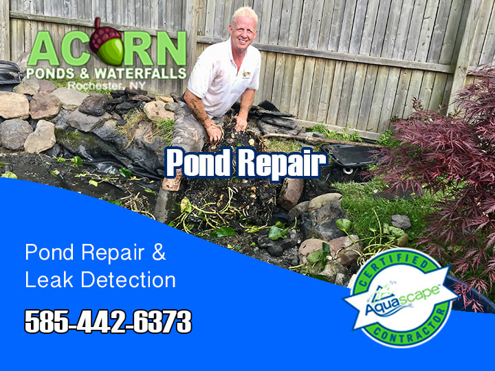 Pond And Waterfall Repair Services Rochester -Western New York